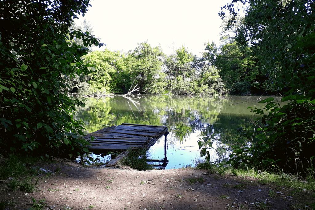 Malinovo Zelená oáza Malý Dunaj