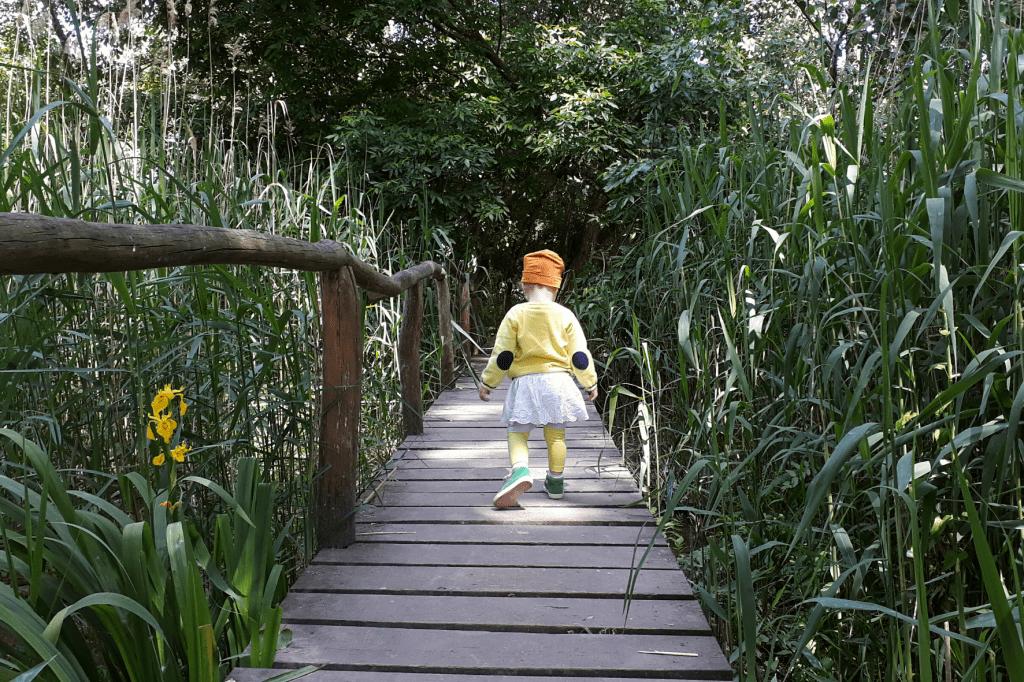 Malinovo rozhladna Hniezdo most