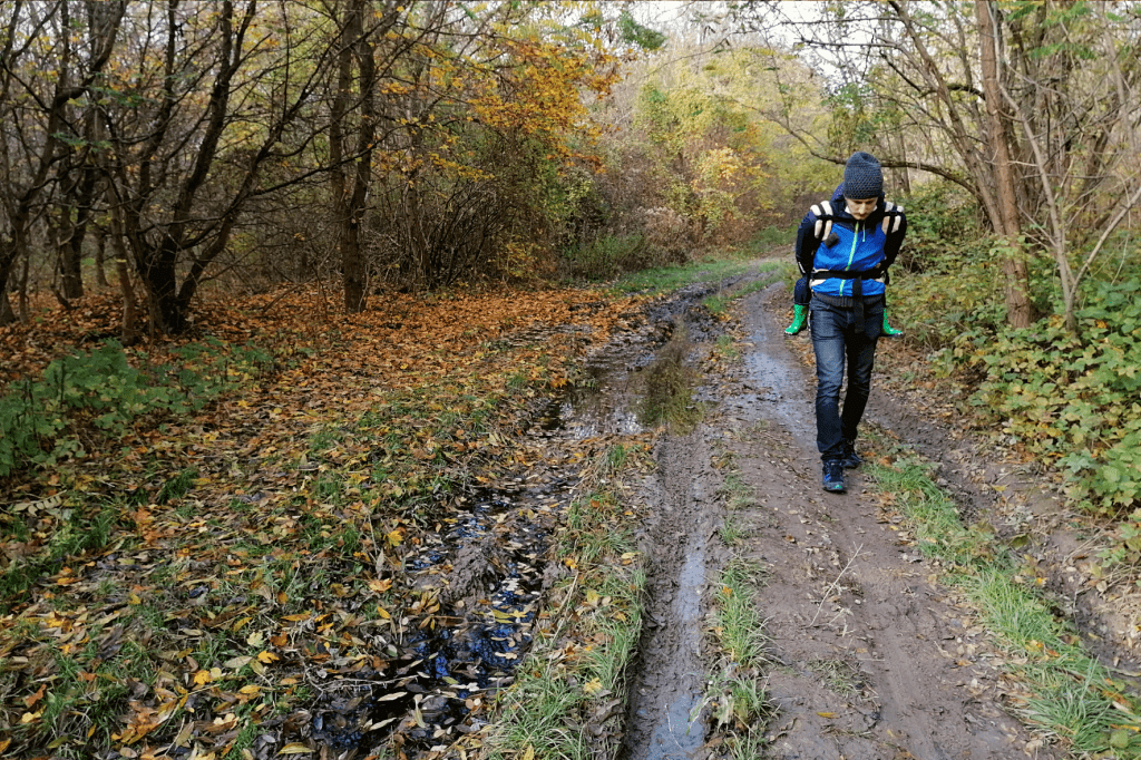 Jarovska Bazantica blato
