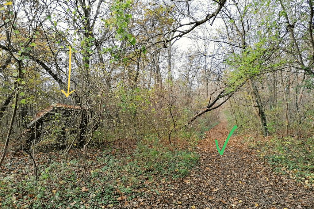 Jarovska Bazantica cesta k mostu