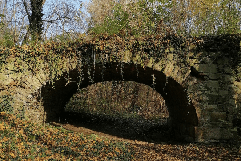 Jarovska Bazantica most oko