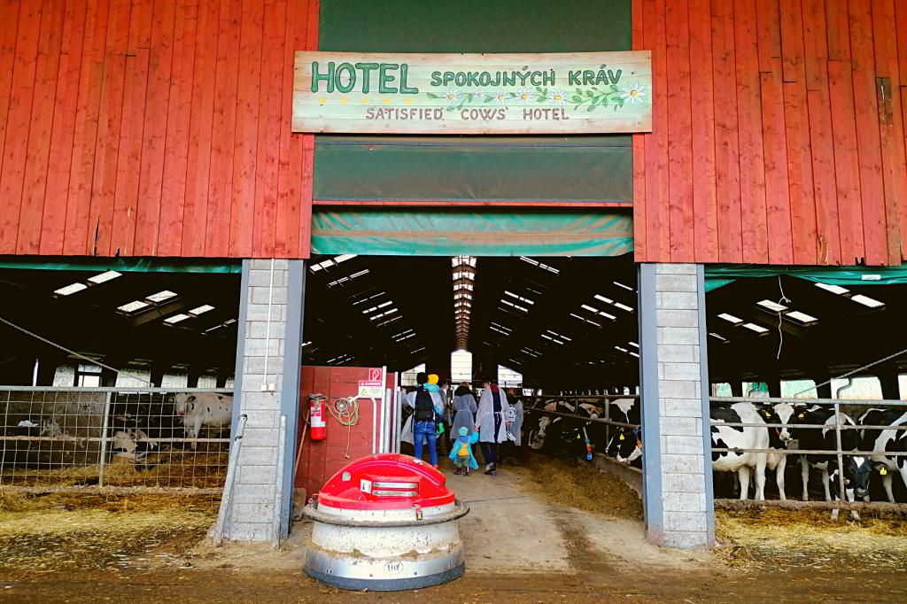 Farma Vychodna Hotel spokojnych krav