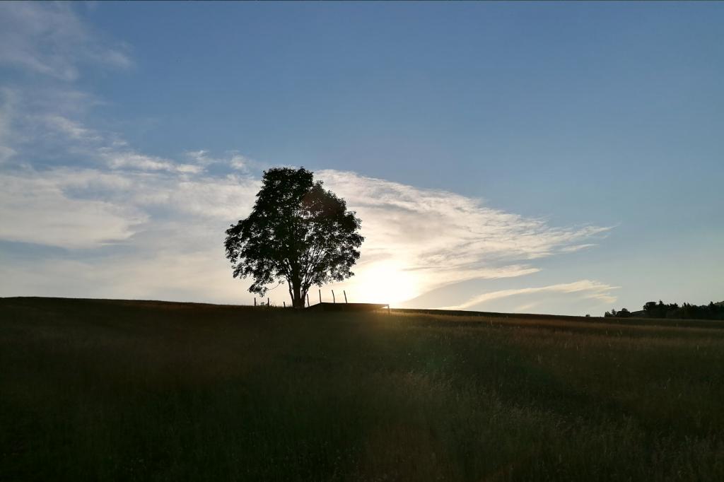 Marekov dvor zapad slnka